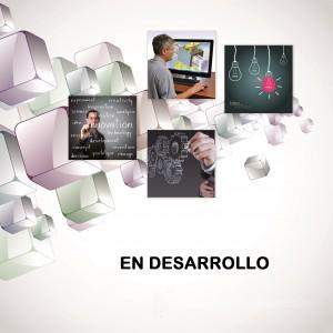 En_Desar